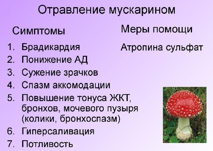 Признаки отравления мускарином