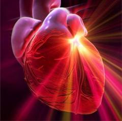 Сердечные гликозиды