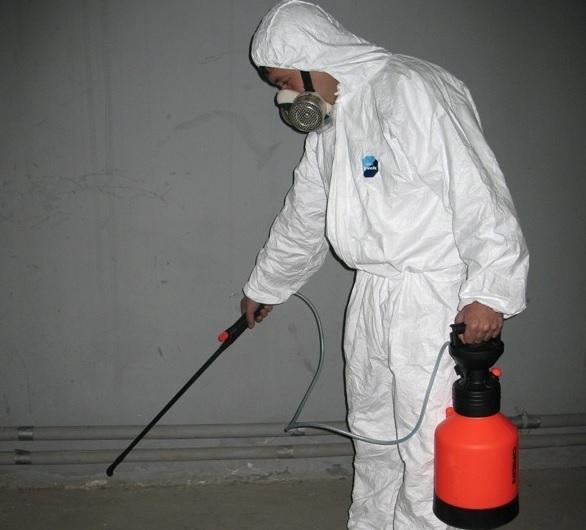 Отравление средством от тараканов