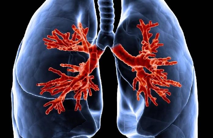 Сколько выходит табак из организма