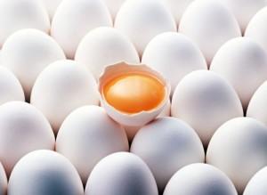 Отравление яйцами