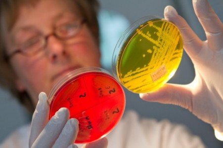 Отличие отравления от кишечной инфекции