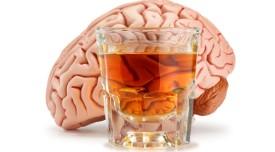 Алклгольная интоксикация мозга