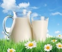 отравление молочными продуктами