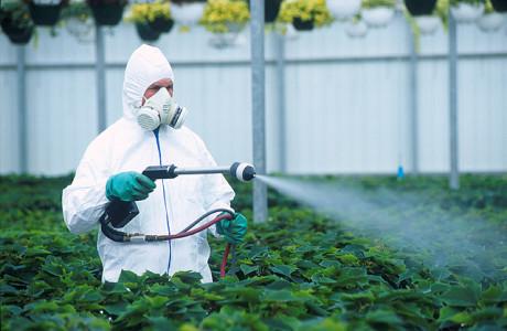 Вред пестицидов